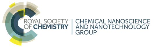Royal Society of Chemistry: Chemical Nanoscience and Nanotechnology Group